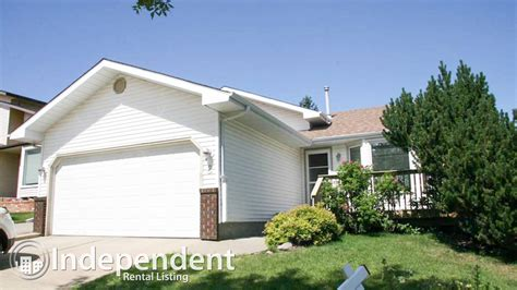 houses for rent that allow dogs 4 bedroom house for rent in sherwood park pet friendly hope street real estate corp