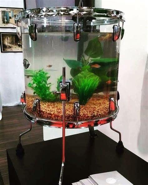 aquarium vistalite drums pinterest aquariums drums