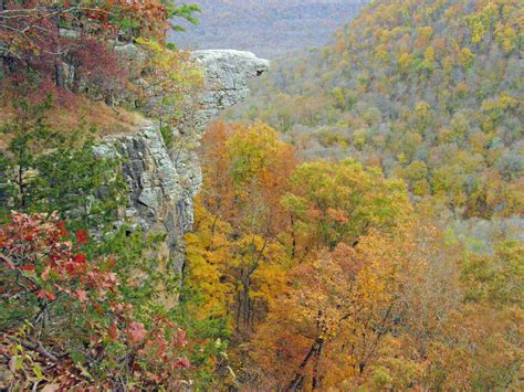 fall colors arkansas fall foliage report 40 29 tv weather