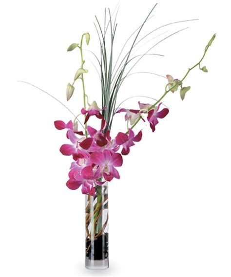 Orchid Arrangements In Vases by Blooming Orchid Vase Floral Arrangements Woyshners