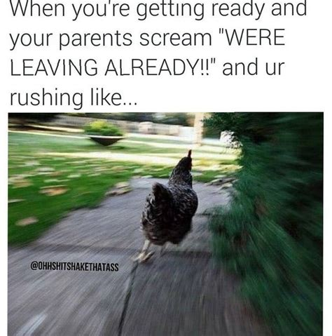 Chicken Running Meme - community post 15 times life had you feeling like a