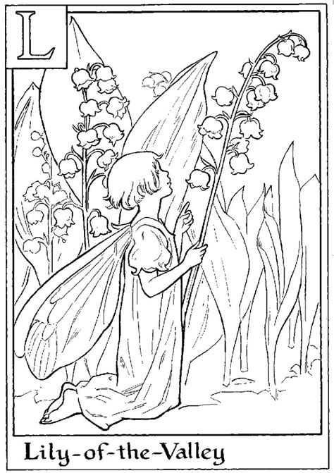 lily of the valley fairy coloring pages to print pinterest