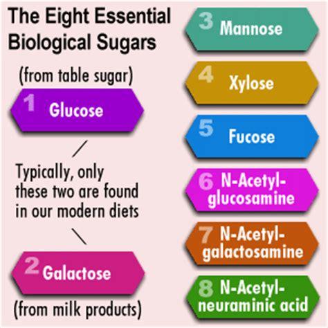 8 essential carbohydrates welkom op progressieve geneeskunde nl