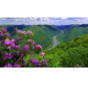 Landscape Nature River Hills With Forest Green Purple