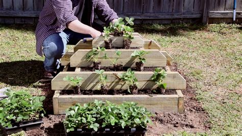 Build A Strawberry Planter by How To Build A Vertical Strawberry Or Herb Pyramid Planter