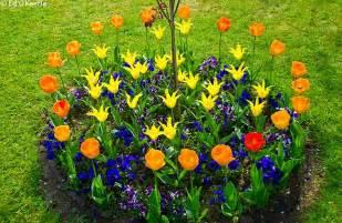 interior decorating pics flower beds