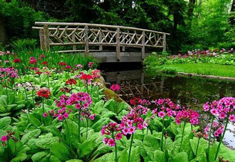 spring landscaping tips outstanding spring landscaping photos best idea home