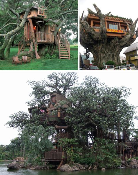 real treehouse sky high but grounded 16 tree houses urbanist