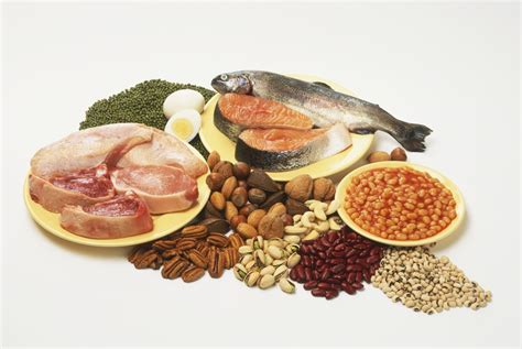 i protein foods what low carb and other proteins to eat