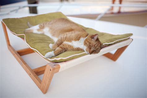 Freekibble Giveaway - eco friendly bambu hammock giveaway daily nuzzles cute funny sweet pet stuff