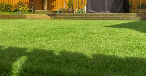 complete guide  levelling  lawn lovethegarden