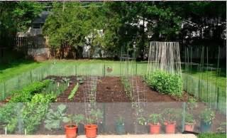 soil condition how to start a backyard vegetable garden