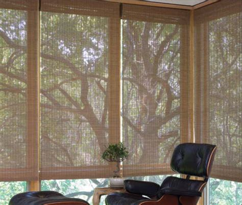 privacy blinds that let light in natural woven shades bringing the outdoors in sierra