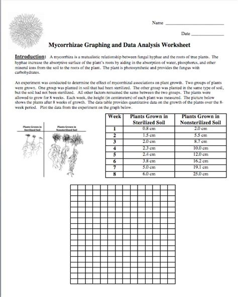 Graphing And Data Analysis Worksheet Answers