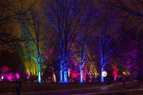lighting up the morton arboretum presents annual