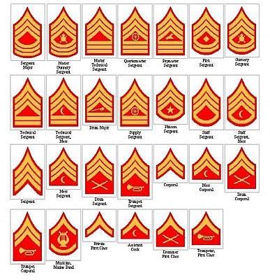 marine corps ranks 1929 1938 usmc chevrons