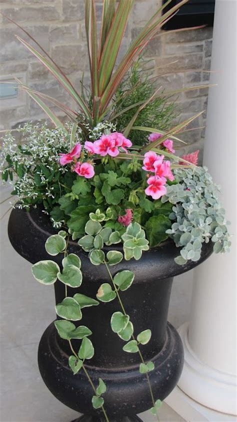 Porch Flower Planters by Best 25 Front Porch Planters Ideas On Front