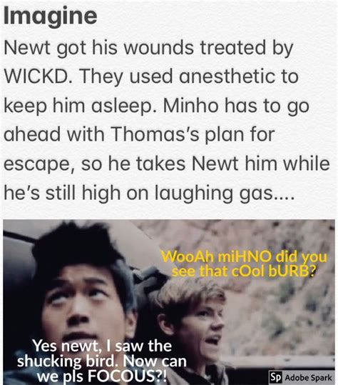 7 Things Your Would Say If Heshe Could Talk by 786 Best Newt Brodie Sangster Imagines Images On
