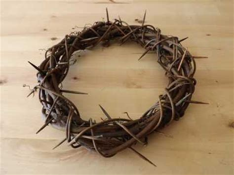 gossip material meaning easter crown of thorns home and garden