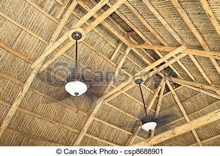 tiki hutte tarif photographies de chevrons plafond ceiling chevrons de