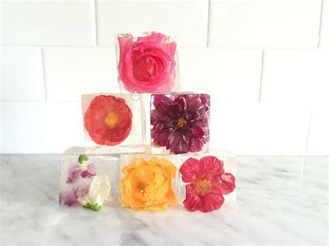 cut flowers food 100 cut flower food diy rainbow roses globalrose 10 fresh cut white hydrangeas