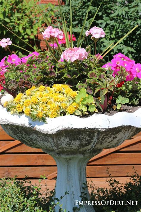 21 gorgeous flower planter ideas empress of dirt
