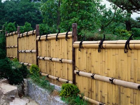 Cheap Backyard Fence Ideas Aa016818 Http Lanewstalk Inexpensive Privacy Fence Ideas Outdoor Pinterest