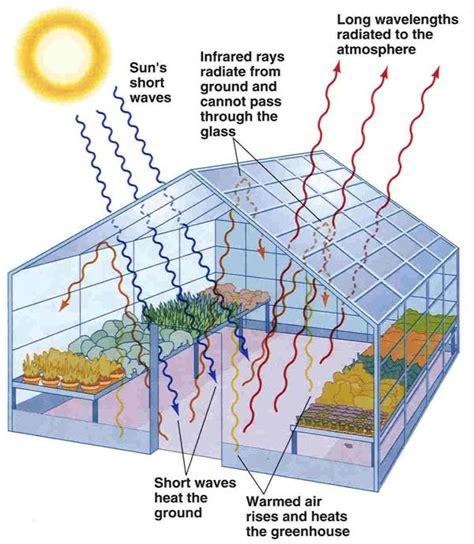 greenhouse designs floor plans solar greenhouse