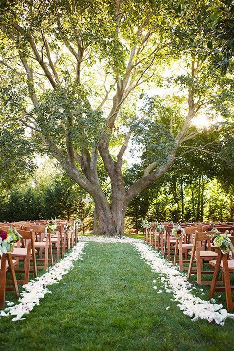 25  best ideas about Tree wedding ceremonies on Pinterest