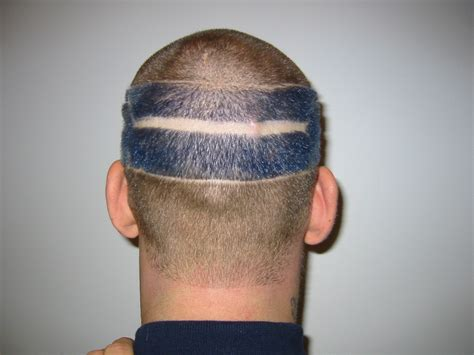 haircuts seattle seattle barbers that do seahawk haircuts look seahawks