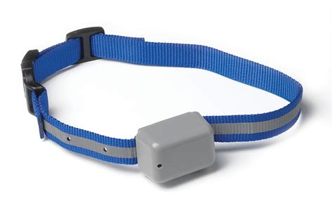 innotek fence innotek rechargeable fence collar paw