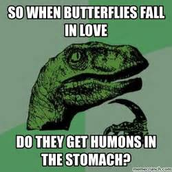 Meme In Love - so when butterflies fall in love
