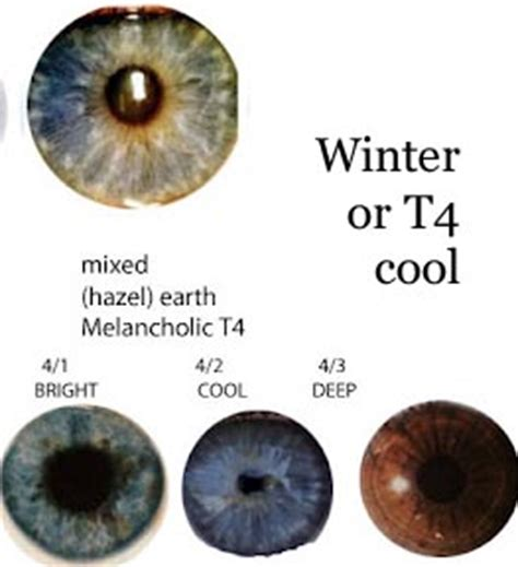eye pattern color season eye shadow colors by season expressing your truth blog