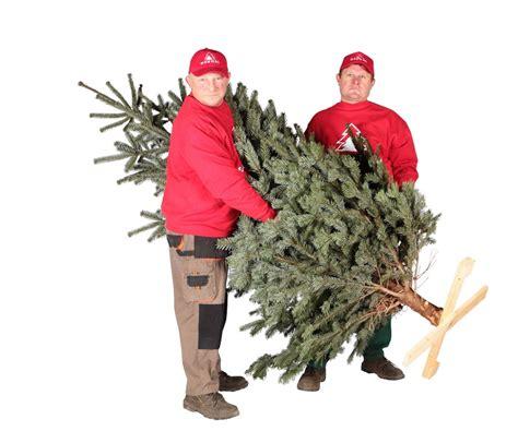 weihnachtsbaum bestellen weihnachtsbaum bestellen weihnachtsbaum hamburg