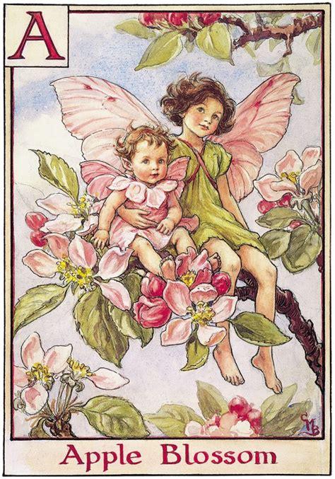 summer on blossom a novel a blossom novel meet the fairies flower fairies