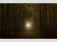 Scary background ·① Download free amazing backgrounds for ... Romantic Backgrounds Hd
