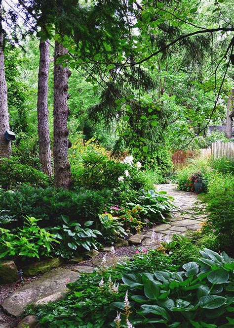 forest backyard best 25 forest garden ideas on pinterest dream garden