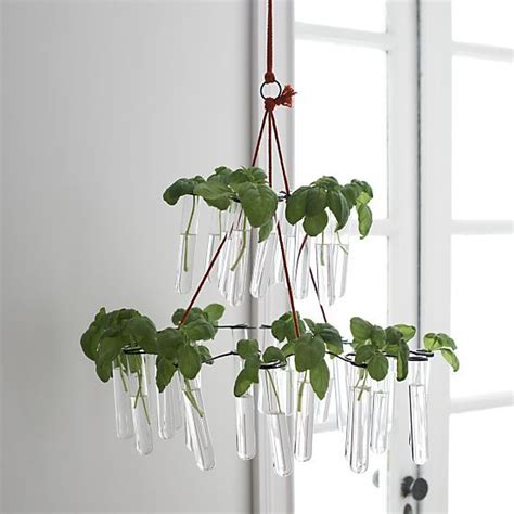 Crate And Barrel Chandelier Fish Chandelier In New Accessories Crate And Barrel Home Decor Pinterest Shabby Chic