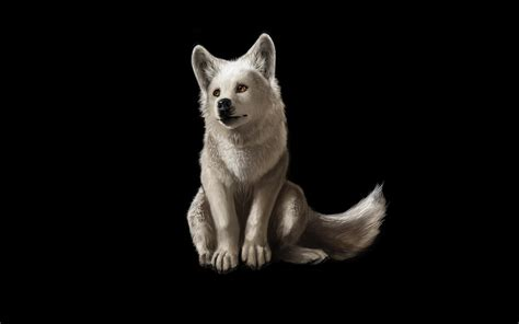 wolf backgrounds cool wolf backgrounds wallpaper cave
