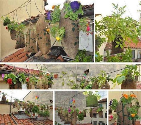 Diy Hanging Plant Holder - diy hanging plant holder garden ideas modern