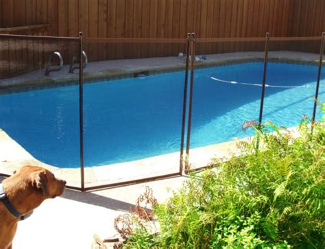 how to keep dog in yard without fence pool safety for pets childguard diy pool fence