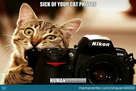 Sick Cat Meme - sick of your cat memes human by shayan40000 meme center