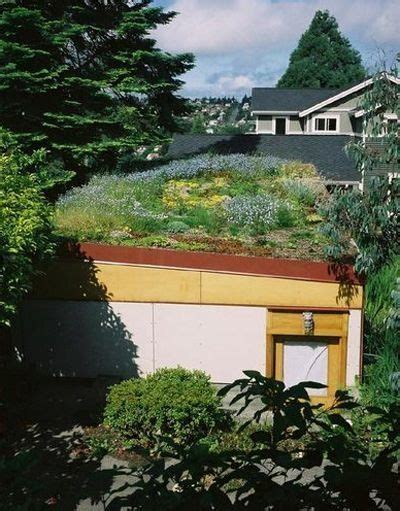 living roof seattle a green roof in seattle living roofs roof ideas and