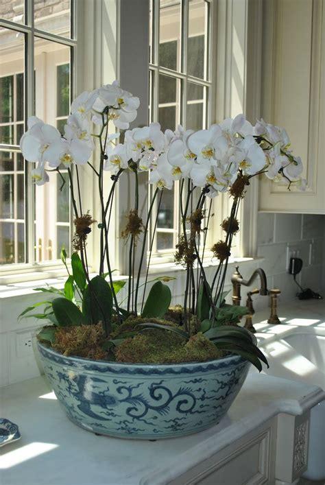 coffee table flower arrangements best 25 orchid arrangements ideas on