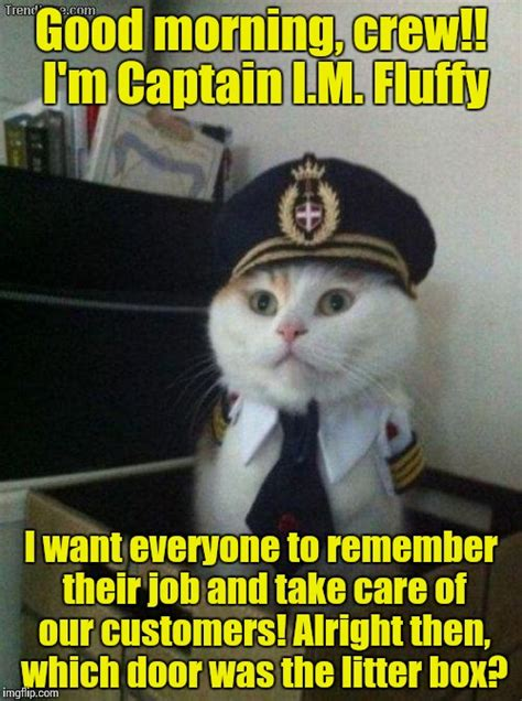 Good Morning Ladies Meme - captain fluffy always found it important to have a little