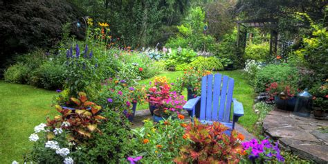 house gardening tips 50 gardening tips landscaping ideas