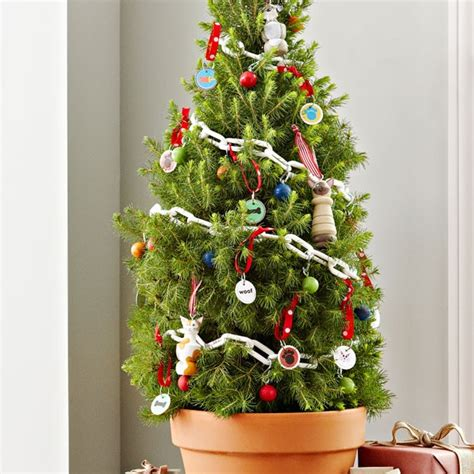 small christmas tree with pet ornaments dog breeds picture