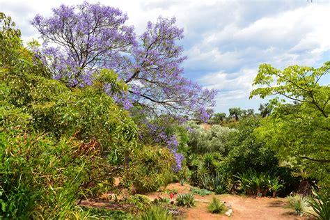 giardino botanico italian botanical heritage 187 giardino botanico lama degli