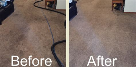 upholstery cleaning chaign il carpet cleaning orland park il 29 95 any size room