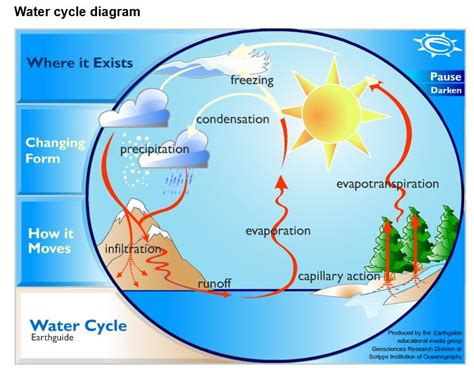 water cycle diagram the homeschool voyager the water cycle facts poetry